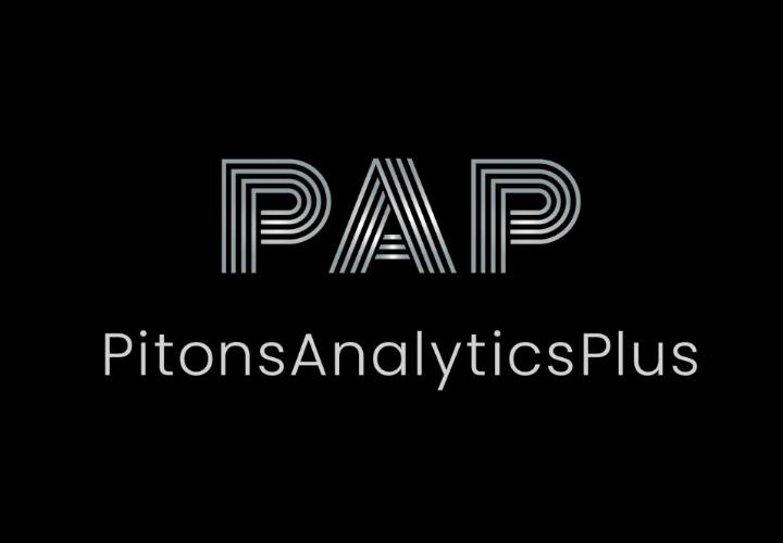 Visit PitonsAnalyticsPlus (PAP) website